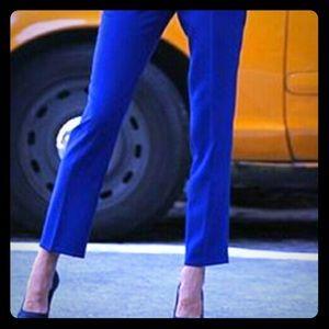 LOFT Electric Blue Pants